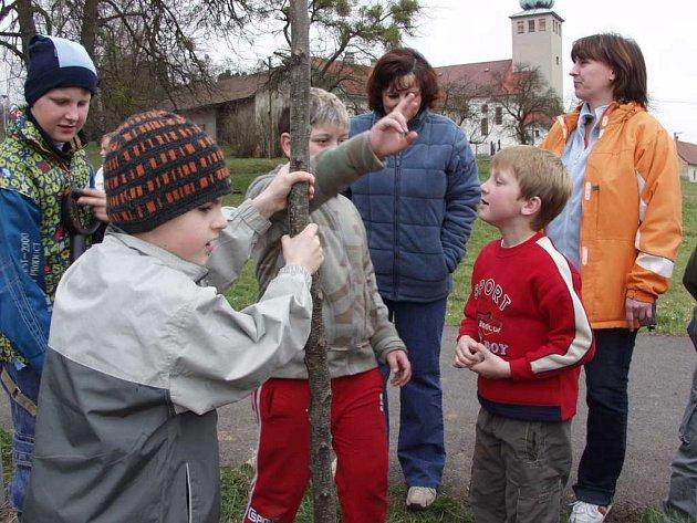Také děti ze školy v Trnávce sadily stromy, které budou součástí Aleje národů.