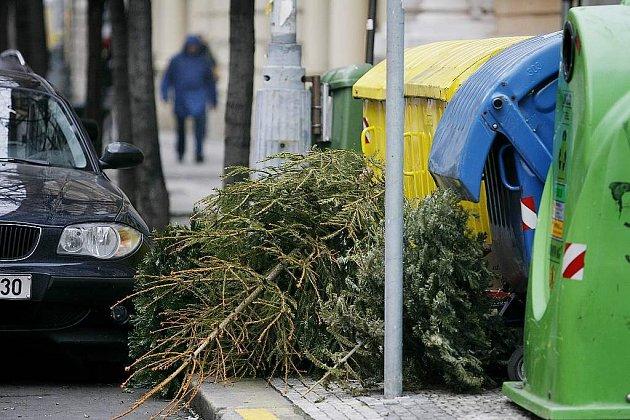 Kam s vánočním stromkem se teď zabývají domácnosti.