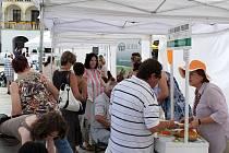 Lidé v Novém Jičíně se ve středu dozvěděli o sociálních službách v okrese. Na Masarykově náměstí představili svou práci poskytovatelé sociálních služeb, pro návštěvníky byl připravený celodenní doprovodný program.