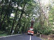 Při likvidaci stromu museli hasiči odmontovat také svodidla.