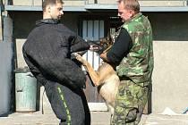 Už 14. ročník soutěže policejních psovodů se o víkendu uskutečnil ve Studénce na letním stadionu.