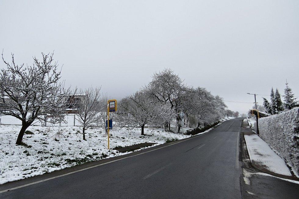 Poměrně silná vrstva sněhu napadala na některých místech Novojičínska z pondělí na úterý 13. dubna 2021. Takto to například vypadalo v okolí Starého Jičína.