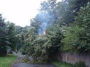Požár stromu na drátech ve Vratimově.