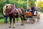 Oslavy 150 let zemědělského vzdělávání v Novém Jičíně přilákaly mnoho návštěvníků.