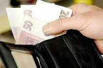 Při ztrátě peněženky lze spoléhat jen na svědomí nálezce.