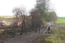 Hašení požáru pole a lesa u Fulneku.
