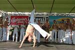 Taneční skupina Abadá Capoeira předváděla brazilské bojové umění.