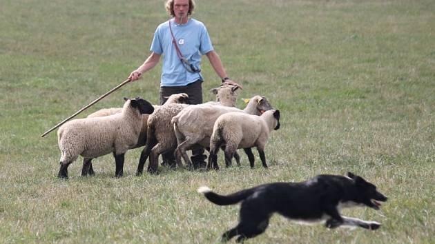 Podívanou, která se jen tak nevidí, nabídlo všem milovníkům zvířat mistrovství České republiky v ovládání ovcí ovčáckými psy. To se uskutečnilo o uplynulém víkendu, tedy v sobotu 8. září a neděli 9. září v Libhošti na kopci zvaném Hůrka.