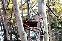 Ochránci zvířat ze Záchranné stanice v Bartošovicích opravili hnízda, která nevydržela nepřízeň letošního počasí.
