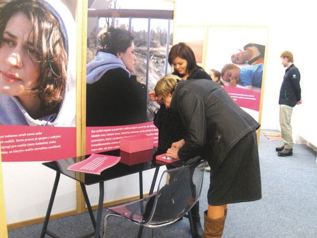 Výstava Obrazy rodičovství je první z mnoha akcí, které letos budou Mezinárodní den rodiny připomínat.