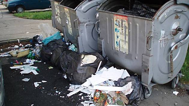 Poloprázdné nádoby a odpadky před nimi byly k vidění v pátek na ulici Dvořákova v Novém Jičíně.  Radní města se chystají podobné snímky v červenci zveřejnit v městském zpravodaji.