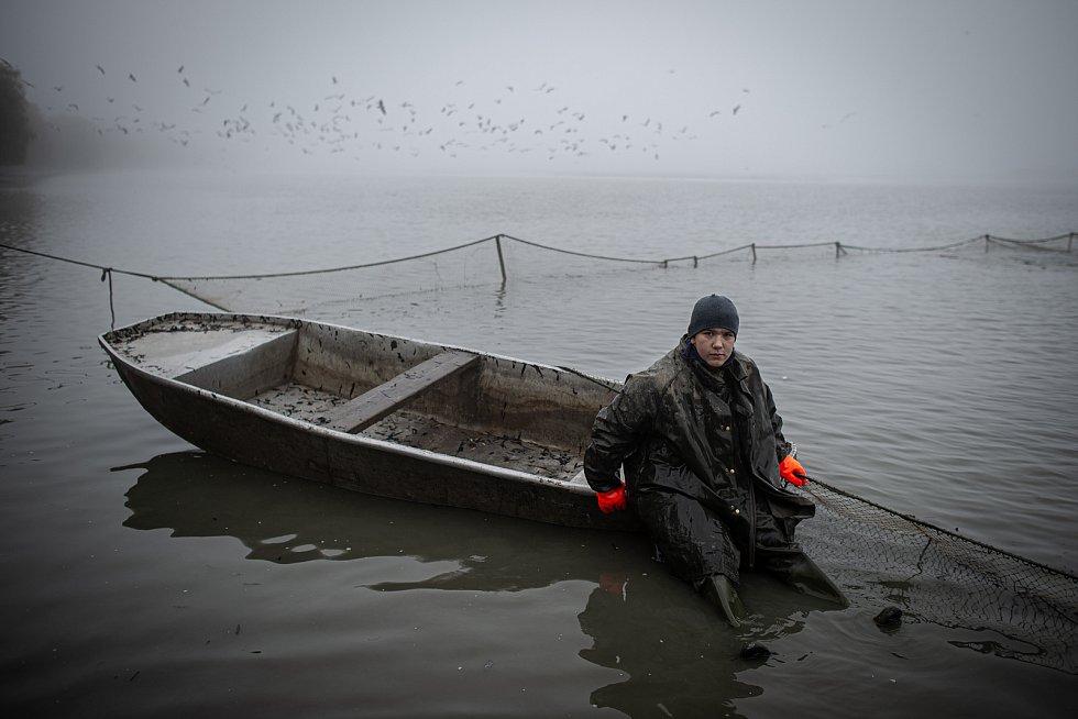 Třicet dnů od otevření stavidla v největším ze soustavy rybníků jižně od Ostravy přichází čas výlovu. Kapři jako obvykle převládají, štiky jsou letos slušně rostlé a candátů je naopak málo.