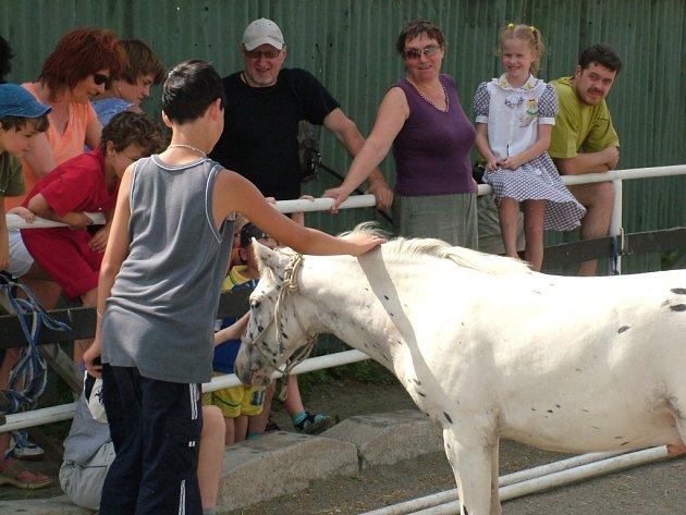Děti i dospělí z azylových domů v Novém Jičíně a Straníku si zpestřili čtvrteční odpoledne jízdou na koních.