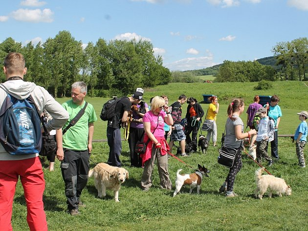 Charitativní pochod upozornil na opuštěné psy.