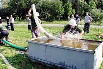 Takto bojovali na heřmanické hasičské soutěži hasiči ze Spálova.