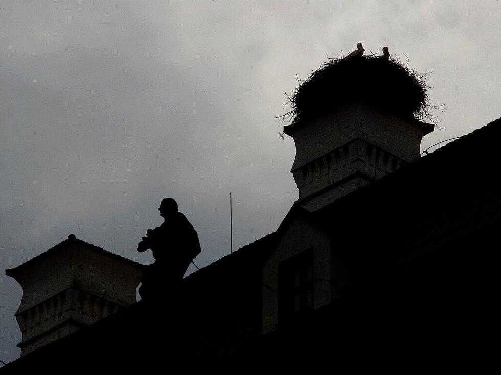 Čápi na komíně kunínského zámku. Ilustrační foto.