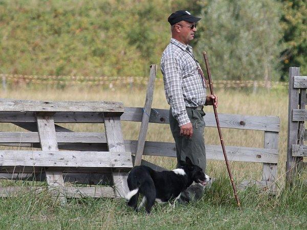 Podívanou, která se jen tak nevidí, nabídlo všem milovníkům zvířat mistrovství České republiky vovládání ovcí ovčáckými psy. To se uskutečnilo ouplynulém víkendu, tedy vsobotu 8.září a neděli 9.září vLibhošti na kopci zvaném Hůrka.