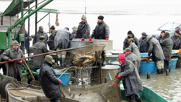 """Další ročník akce """"Poodří plné příležitostí"""" aneb Podzimní pooderské rybářské slavnosti v Bartošovicích přilákal stovky návštěvníků."""