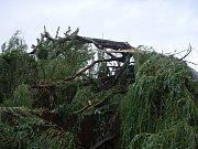 Pád vrby na rodinný dům na kůlnu v Odrách.