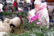 Tradiční Vánoční jarmark v Odrách.