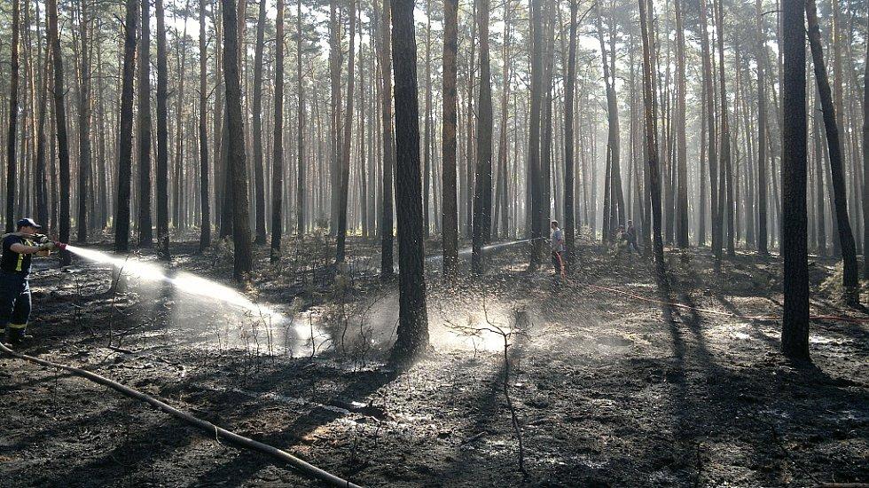 Až do nedělního večera bude zasahovat u rozsáhlého požáru lesa u Bzence na Hodonínsku i pět jednotek Hasičského záchranného sboru Moravskoslezského kraje (HZS MSK), které sem přijely s pěti automobilovými cisternami (CAS 32) Tatra a od sobotního brzkého r