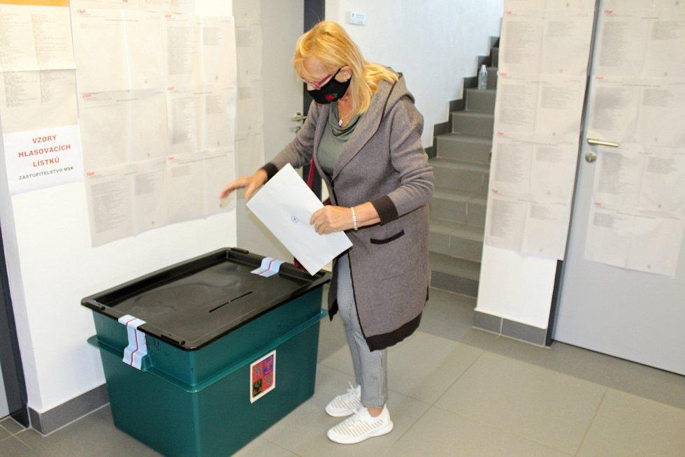 Volby 2020 na Novojičínsku. Ilustrační snímek.