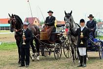 Úspěšný vozatajský tým z Loučky. Vzadu na kozlíku vlevo, jezdec Jan Minarčík s koněm Magnátem, na kozlíku vpravo trenér Ladislav Jirgala s Koletem.
