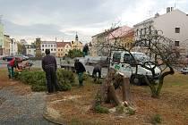 Do projektu Podpora regenerace urbanizované krajiny se pustili v Bílovci. Město obnoví a zrevitalizuje parky, které se nacházejí na náměstí a na Beskydské ulici.