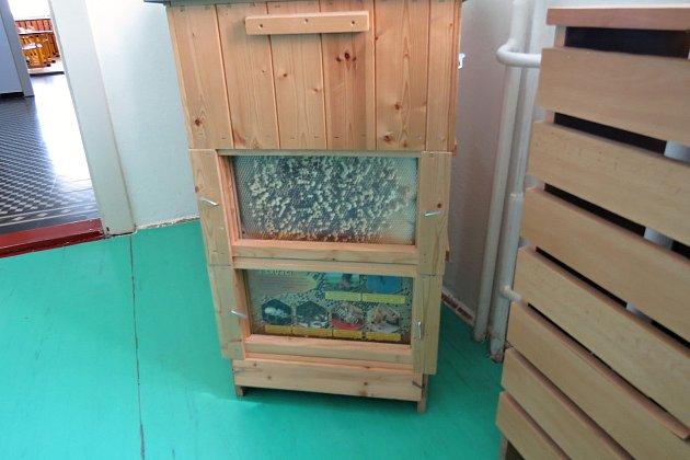 Vzákladní škole vHeřmanicích uOder mají iučebnu pro školní včelařský klub.