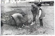 Týdeník Rozkvět informoval před třiceti lety také o výsadbě záhonu růží v Bartošovicích.