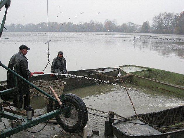 Rybářské slavnosti v Bartošovicích.