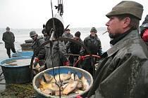 """Rybářské slavnosti nabídly jako vždy bohatý program. Sobotní ráno zaměstnalo především rybáře, kteří se podíleli na výlovu """"Dolního rybníka"""". Návštěvníci se pak přesunuli do zámku, kde se mohli seznámit s činností jednotlivých organizací."""