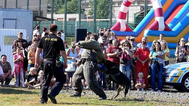 Ukázky práce s policejním psem patří mezi oblíbené zpestření akcí. Nejinak tomu bylo i v Bílovci při zahajovací akci Evropského týdne mobility.