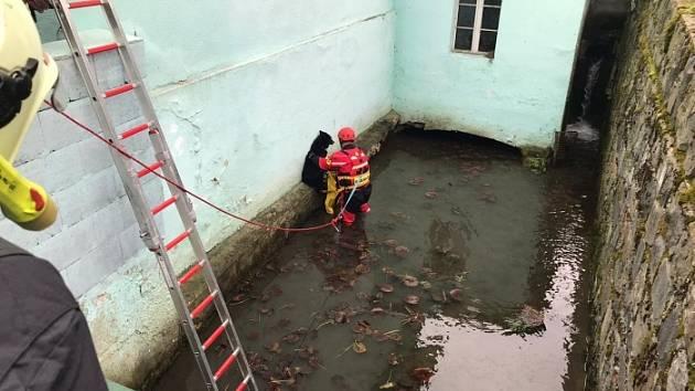 Hasiči. Záchrana psa v Kyjovicích.