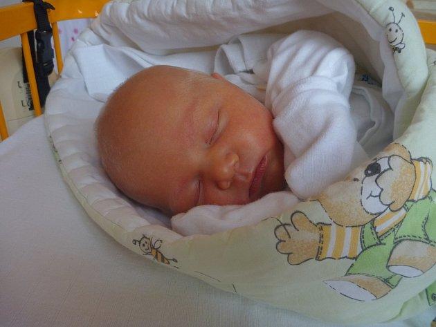 První miminko města Příbor r. 2016: VANESA PAPA, Příbor, nar. 3. 1. 2016, 49 cm, 3,60 kg. Nemocnice Nový Jičín.
