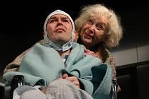 Slovácké divadlo, včele s excelentní Květou Fialovou, vystoupí v Beskydském divadle s jedním z nejdojemnějších příběhů nazvaném Oskar a Růžová paní.