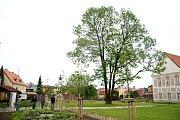 Piaristické zahrady v Příboře.