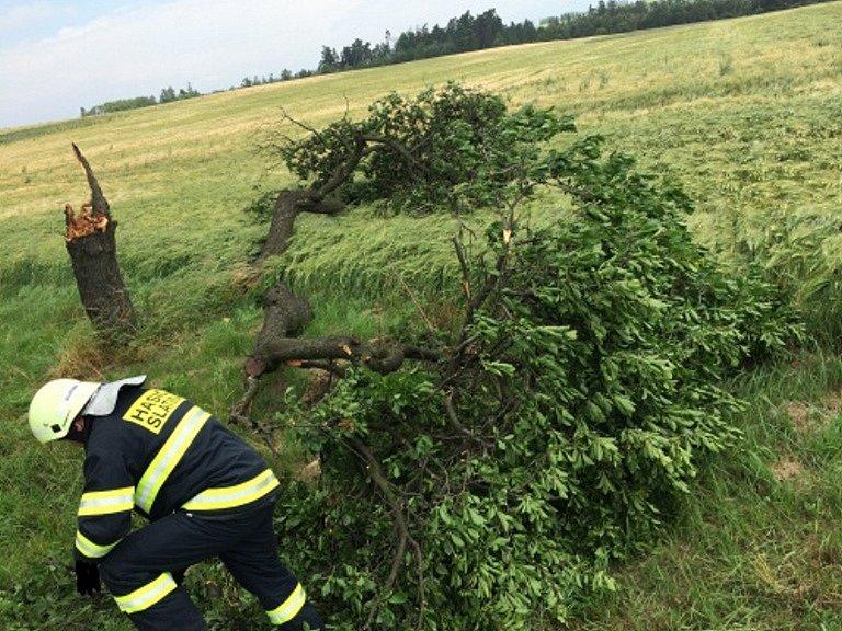 Vyvrácený strom ve Slatině na Novojičínsku.