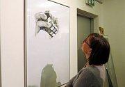 """Výstava """"Realistická kresba"""" je k vidění ve Výstavní síni Albína Poláška v Kulturním domě ve Frenštátě pod Radhoštěm až do 21. dubna."""