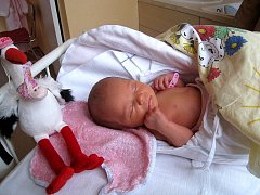 Aneta Palacká, nar. 12. 11. 2010, 47 cm, 2, 73 kg, Hranice – Drahotuše, nemocnice Nový Jičín.