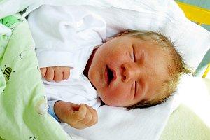Právě jsme se narodili