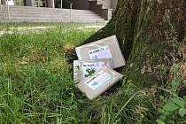 Městská knihovna ve Frenštátě pod Radhoštěm připravila na léto novou geolokační hru s názvem Na stopě. Po Frenštátě a okolí knihovna ukryje několik krásných nových knih pro děti i dospělé a kniha pak zůstává šťastnému nálezci.