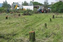 Pařezy zůstaly z pětasemdesáti ovocných stormů, které musely ustoupit rekonstrukci autobusového nádraží a stavbě supermarketu v Kopřivnici.