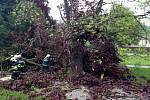 Prudký vítr ve čtvrtek a v pátek lámal větve a vyvracel stromy. Ve Vražném poničil i střechu školy.