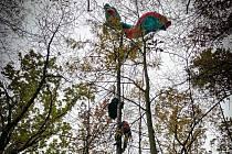 Do nesnází se v sobotu 14. listopadu 2020 odpoledne dostal paraglidista v Odrách na Novojičínsku.