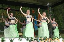 Návštěvníci tanečního festivalu Hostýnská Venuše 2011 mohli obdivovat nejen taneční umění vystupujících, ale také krásné kostýmy.