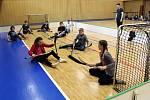 Paralympijský školní den zažila asi stovka studentů bíloveckého gymnázia v pátek 22. února.