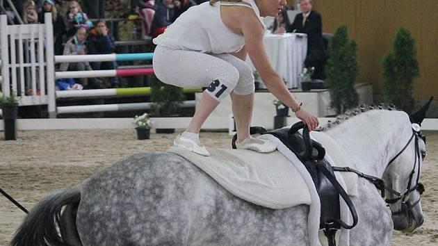 Mezinárodní závody ve voltiži ve Frenštátě pod Radhoštěm.
