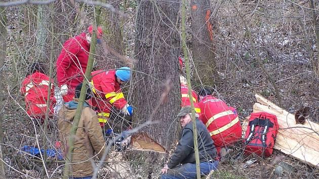 Místo tragédie ve Studénce, kde rozlomený strom zabil muže.