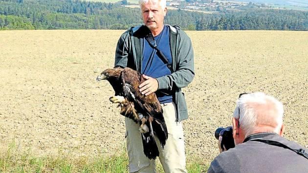 Petr Orel drží uzdravenou orlici Toničku, kterou následně vypustil zpět do volné přírody.